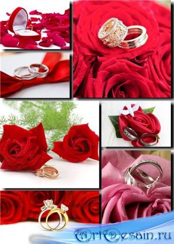 Клипарт - Романтические розы и кольца