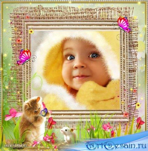 Детская рамка для фотошопа - Рыжий котенок и бабочки