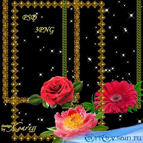 Три золотые рамки для фото с цветами - Прекрасный мой цветок