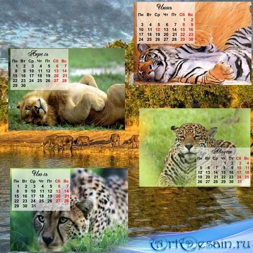 Календарь 2013 - дикие кошки