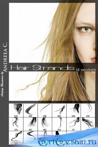 Кисти - Женские волосы