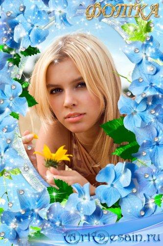 Цветочная рамка для фотошоп - Голубые цветочки