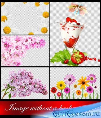 Изображения без фона - Цветы, Коктейль » ArtDesain.ru ...: http://artdesain.ru/72697-izobrazheniya-bez-fona-cvety-kokteyl.html