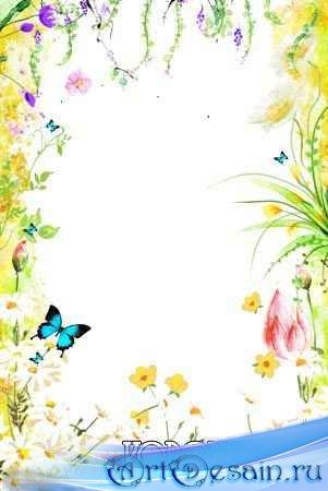 Рамка для фотошоп - Полевые цветы