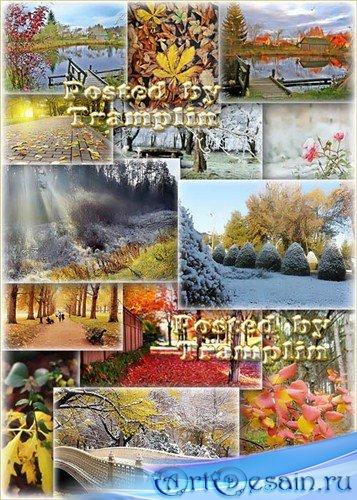 Красивые осенние пейзажи – Такой разный Ноябрь