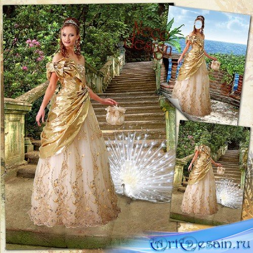 Шаблон для фотомонтажа женский с расшитым золотом платьем - На каменных сту ...