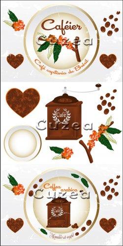 Coffee design elements in vector