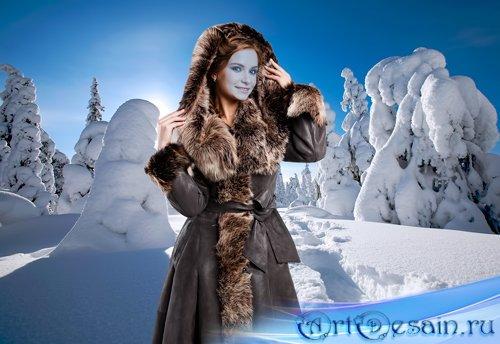 Шаблон для фотошопа – На прогулке в зимнем лес