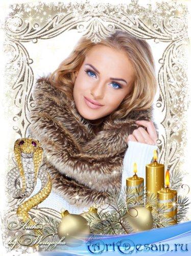 Новогодняя рамка для фотошопа - Золотистая змея, свечи и елочные шары