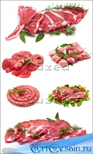 Свежее мясо - Stock photo