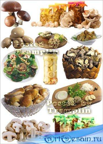 Грибы и Блюда из грибов - Клипарт на белом фоне