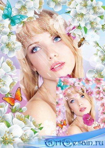 Фотошоп рамка снова яблони в цвету