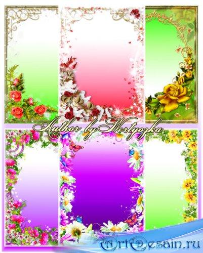Рамки для фотошопа - Розы, астры и ромашки