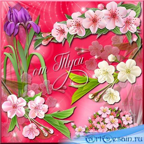 Клипарт - Весенние цветы прелестны и нежны