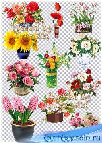 Клипарт на прозрачном фоне – Букеты цветов в вазах, корзинах, горшках