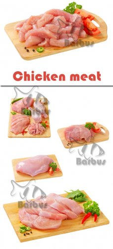 Chicken meat / Куриное мясо - Photo stock