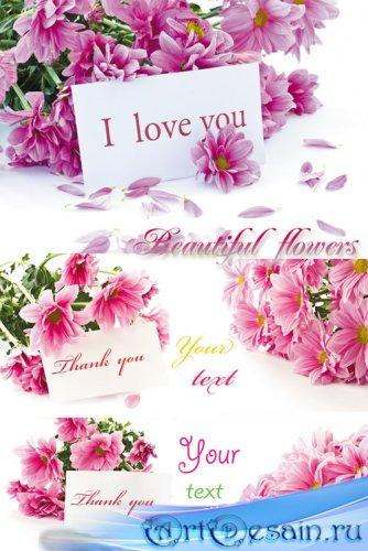 Цветы с карточками для текста, букеты цветов - растровый клипарт