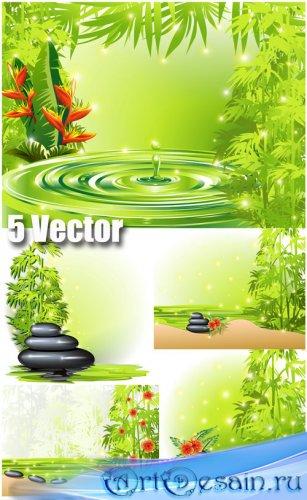 Спа фоны, камни, бамбук, цветы, вода - векторный клипарт