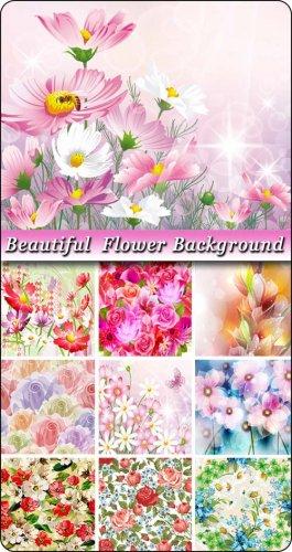 Красивые цветочные фоны в векторе / Beautiful flower backgrounds in vector