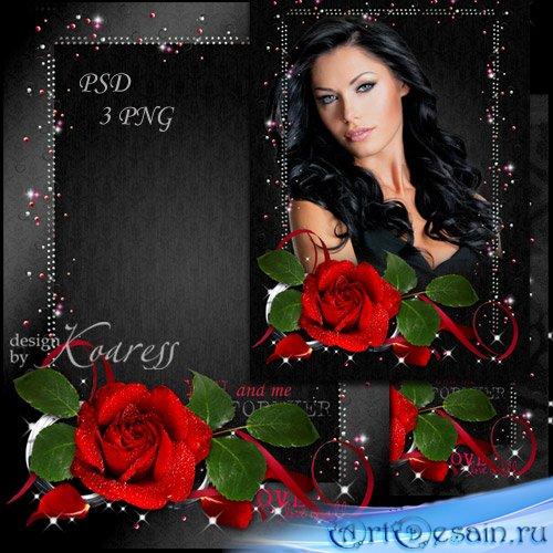 Романтическая женская рамка для фотошопа - Роза алая