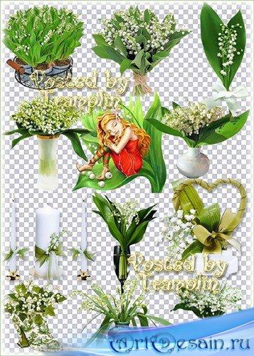 Ландыши – Весенний клипарт на прозрачном фоне