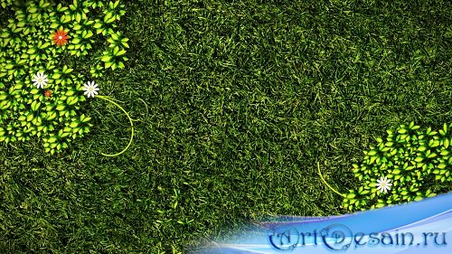 HD футаж Зеленый сад
