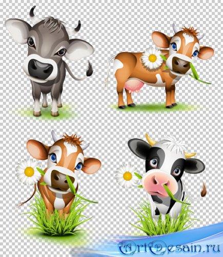 Клипарт - Мультяшные коровы на прозрачном фоне