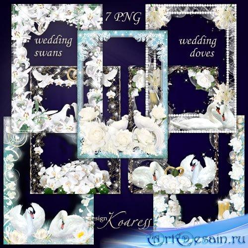Набор фоторамок для свадебных фото - Белые лебеди, нежные голуби