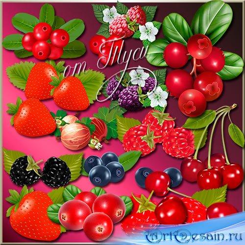 Клипарт - Вкусные ягоды