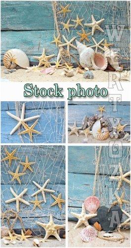 Морские фоны / Marine backgrounds, fishing nets and seashells - Raster clip ...