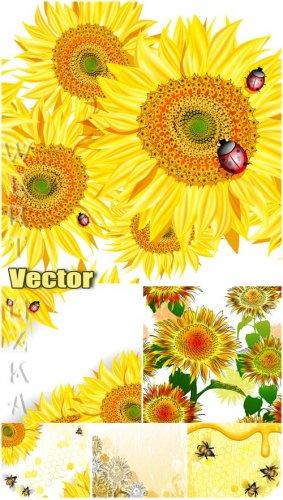 Подсолнухи, пчелы и божьи коровки / Sunflowers, bees and ladybugs - vector  ...