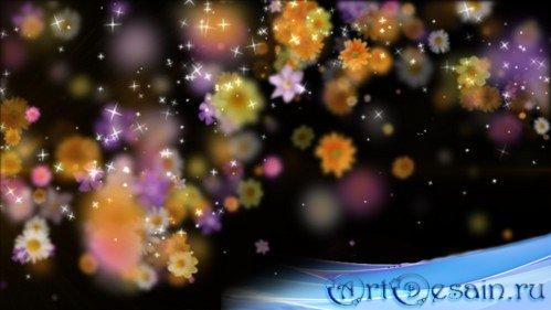 HD футаж Магия цветов MOV