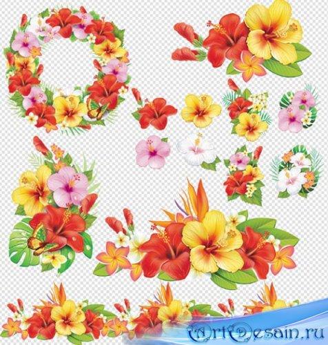Клипарт - Цветочные композиции на прозрачном фоне PSD
