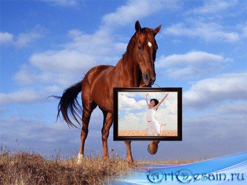 Фоторамка psd - Лошадь несет картину с вашей фотографией