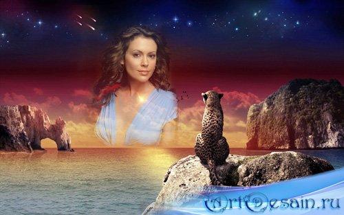 Рамка psd - Леопард на закате у моря любуется вашей фотографией