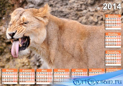 Календарь psd - Смешная львица с языком