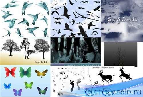 Набор кистей: птицы, облака, деревья, следы ног, рук, бабочки, животные