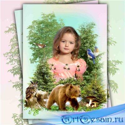 Рамка-коллаж для фотошопа с природой – Песни леса