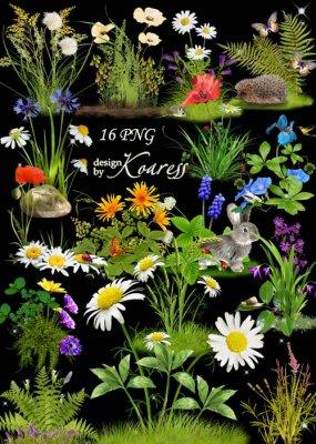 Набор цветочных кластеров для дизайна с луговыми цветами - Цветочная поляна ...