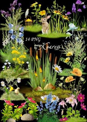 Цветочные png кластеры для дизайна с полевыми цветами - Цветочная поляна -  ...
