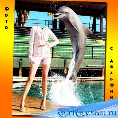С веселым дельфином - Шаблон для Photoshop