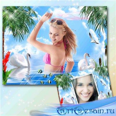 Рамка-коллаж для фотошопа – Лебеди