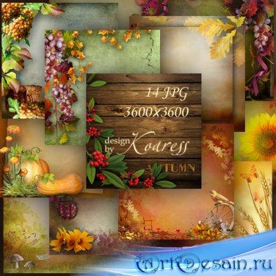 Осенние фоны для дизайна с грибами, ягодами, листьями - Разноцветная осень