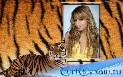 Фоторамка - Красивый тигр