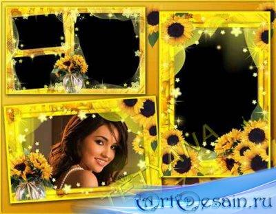 Цветочные рамочки для фотошоп - Подсолнуховое настроение