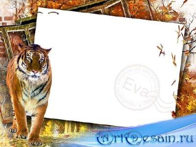 Рамочка для фото - Сохраним тигра