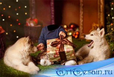 Шаблон psd - Ребенок с двумя щенками лайки