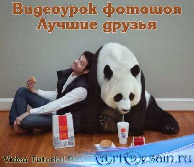 Видеоурок фотошоп Лучшие друзья