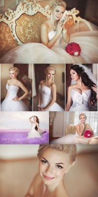 Прекрасная невеста - растровый клипарт