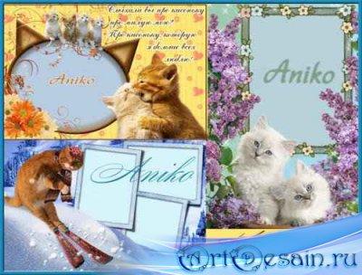 кошачьи рамочки для фото